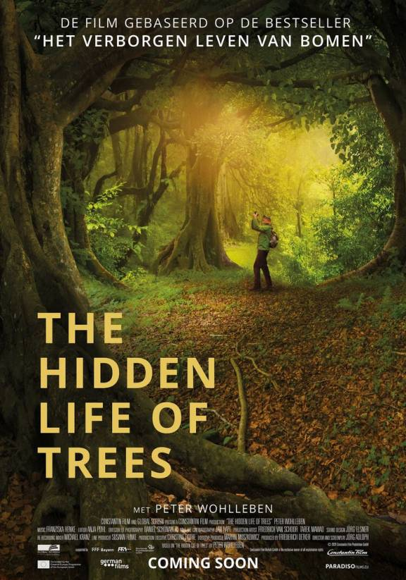 Filmposter documentaire The Hidden Life of Trees