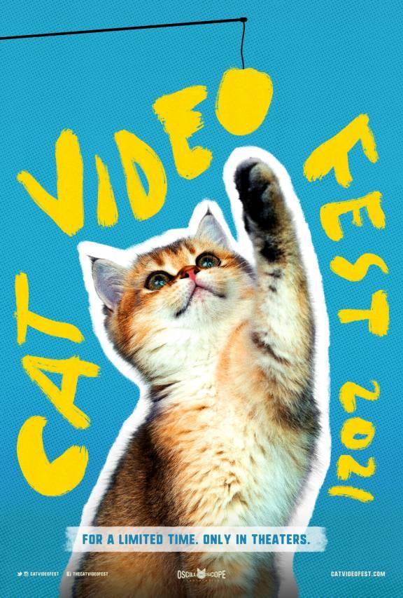 Filmposter Cat Video Fest 2021